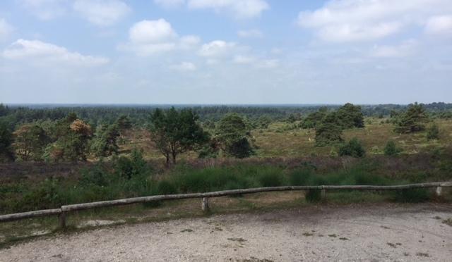 Pieterpad dag 12: Hellendoorn – Holten